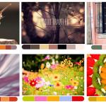 10 webs gratis para crear paletas de colores