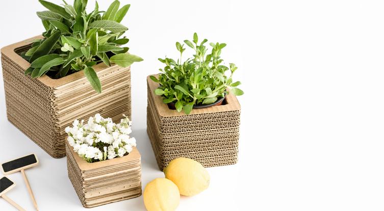 cajas para flores maceteros