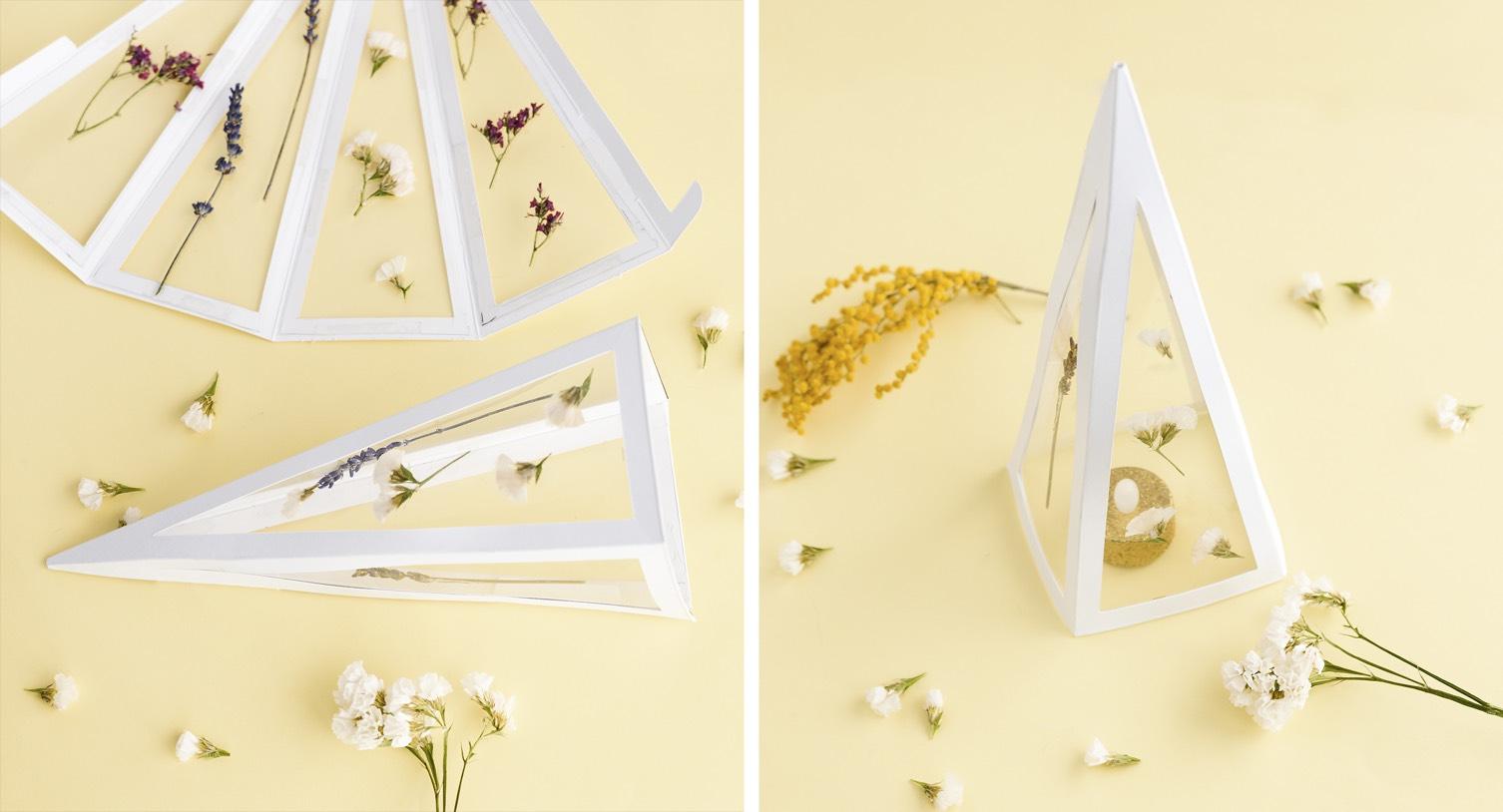 Como hacer una piramide botánica - 4