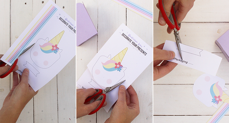 pasos123-selfpackaging-unicornio